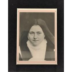 Magnet Thérèse 18A