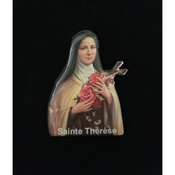MAGNET THERESE SOUPLE